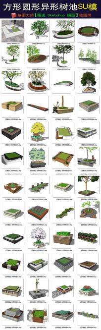 方形圆形异形树池su模型