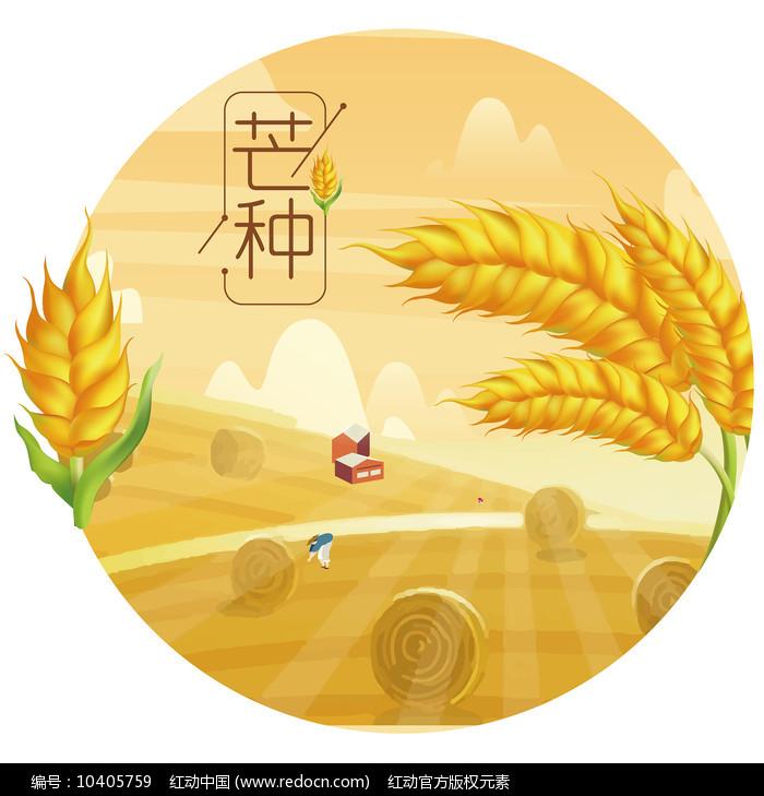 原创元素24节气芒种稻子小麦图片