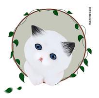 花圈卡通可爱手绘猫