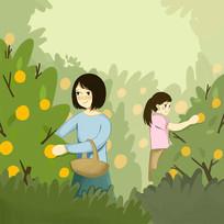 手绘创意美女采摘脐橙赣南脐橙插画