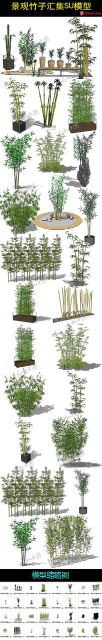 景观竹子汇集SU模型