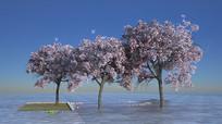樱花桃花植物模型