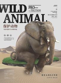 保护野生动物创意海报