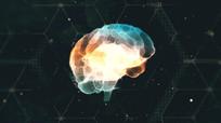 PR模板智能大脑logo片头视频模板