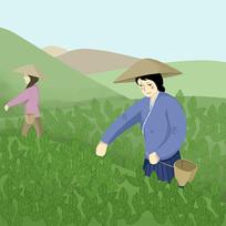 原创手绘采茶姑娘绿茶茶文化茶园插画元素