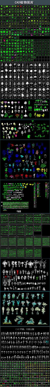 CAD植物图库
