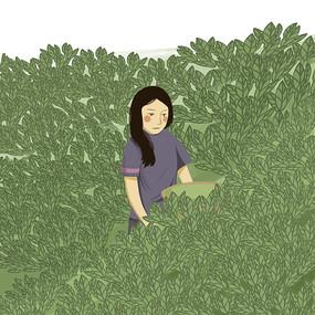 手绘创意采茶的小姑娘茶文化插画元素