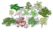 3D景观树组合