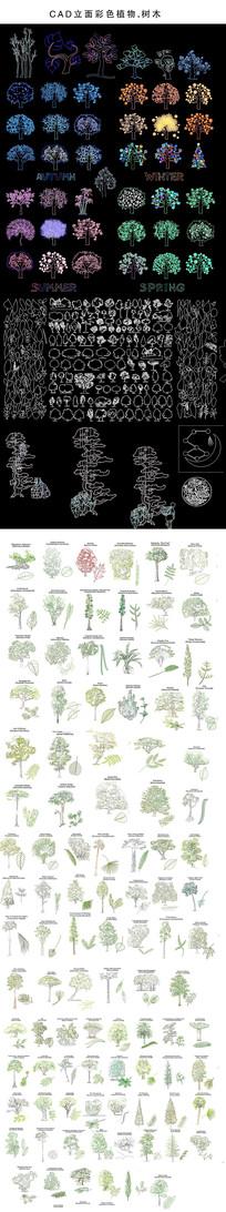 CAD树木立面图