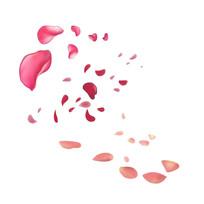 手绘粉色飘落的花瓣装饰元素