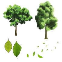 水彩原创手绘树木元素