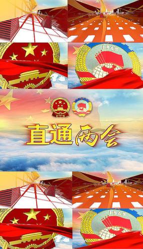 党政 党建 政治协商会议两会AE模板
