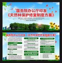 天然林保护修复制度方案展板