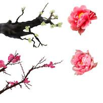 原创手绘梅花桃花牡丹花装饰元素1