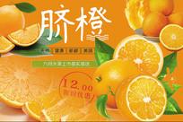 高端大气绿色脐橙宣传海报