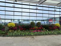 机场植物小品