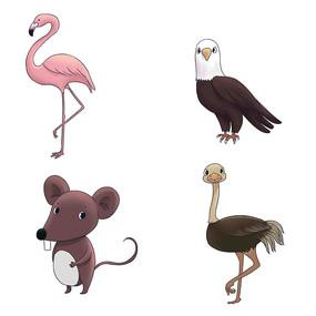 原创卡通可爱火烈鸟鸟类老鼠鸵鸟动物插画