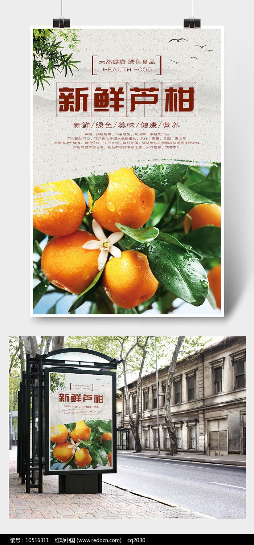 新鲜芦柑海报设计图片