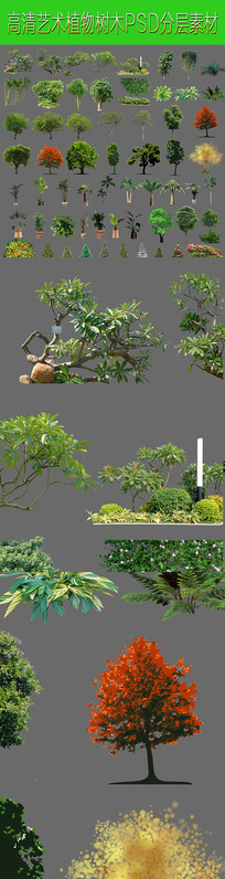 超高清植物分层素材