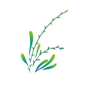 花草叶片组合