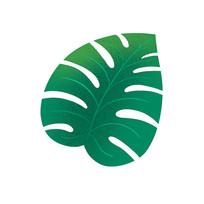 绿色大叶片
