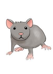 手绘灰色老鼠2020鼠年元素插画