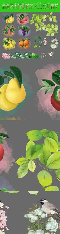 水果植物分层PSD素材