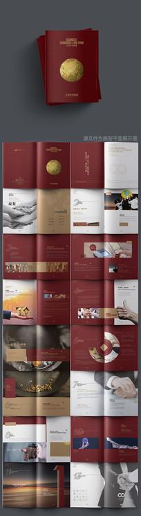 大气红色金融画册设计