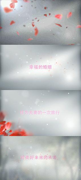 唯美浪漫简约婚纱MV婚礼相册视频模板