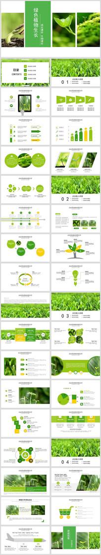 绿色唯美植物生长敬畏生命发芽PPT模板