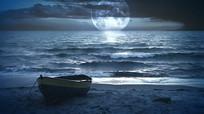 月光下海滩美景视频素材 mp4
