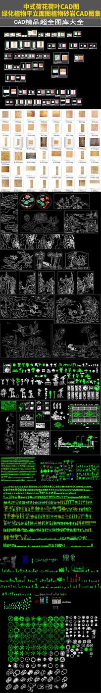 中式荷花荷叶植物砂岩CAD图