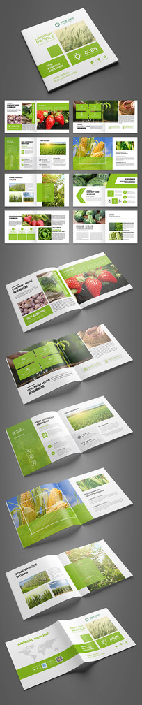 绿色方形农产品画册