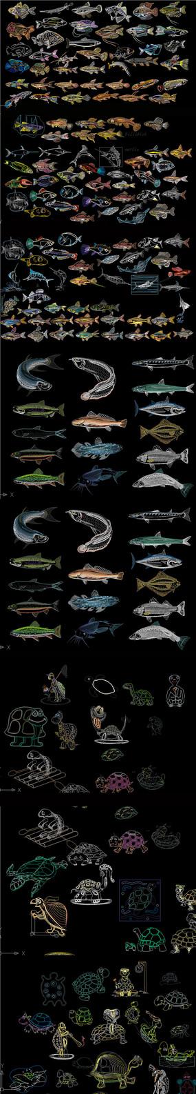 炫彩鱼 海洋海洋生物CAD图库
