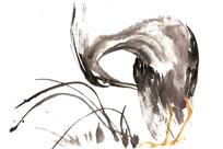 啄羽毛的鸟插画 PSD
