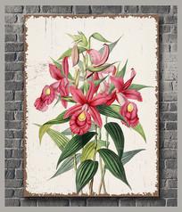 古典花卉装饰画 PSD
