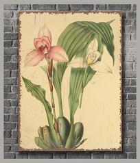 怀旧复古花卉装饰画 PSD
