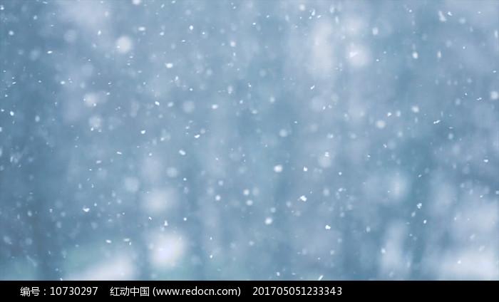 冬季下雪雪花飞舞视频素材图片