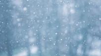 冬季下雪雪花飞舞视频素材