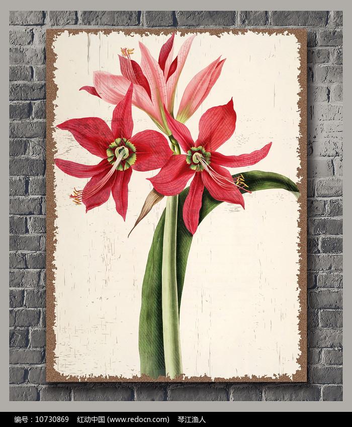 高清复古花卉装饰画图片