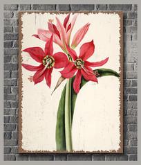高清复古花卉装饰画