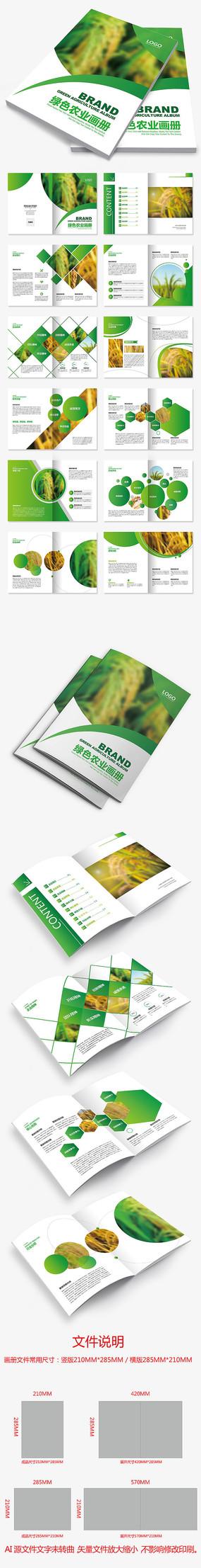 绿色水稻小麦农业画册