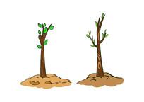 原创植树节卡通小树苗插画素材PSD