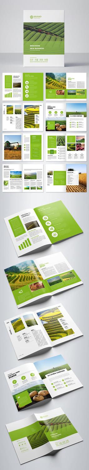 绿色农产品画册 AI