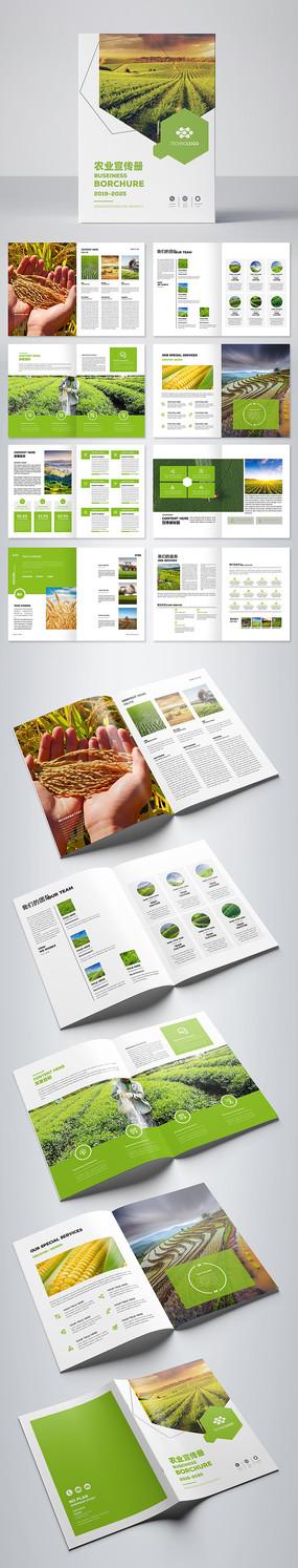 绿色农业合作社画册模板 AI