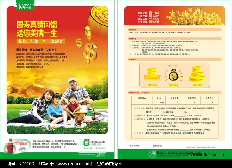 家庭保险宣传单页