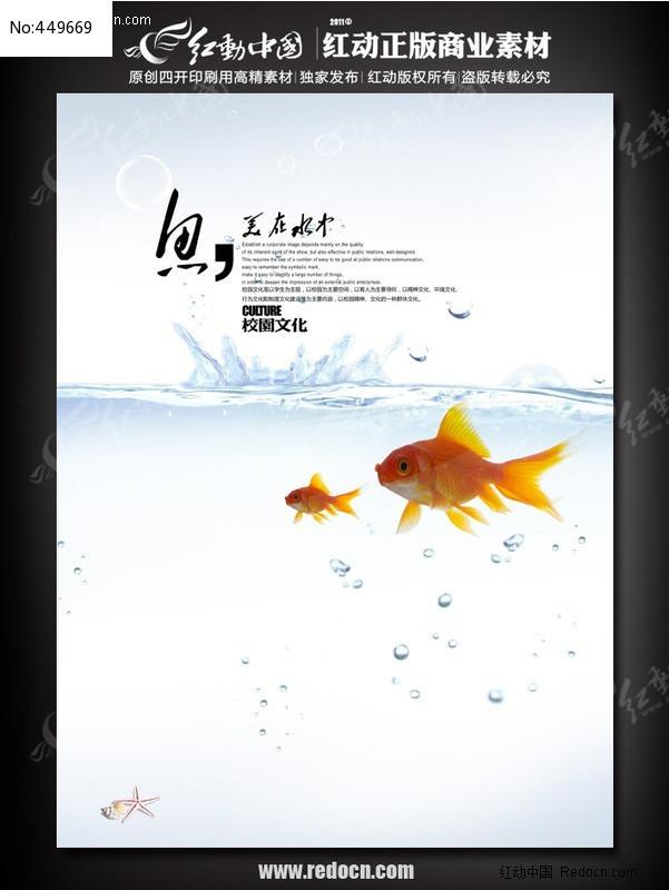 企业文化海报设计 鱼美在水中图片
