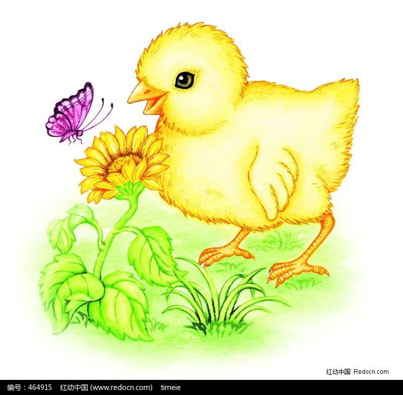 手绘食物鸡插画