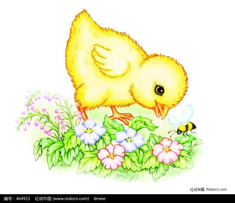 标签:手绘小鸡 手绘蜜蜂