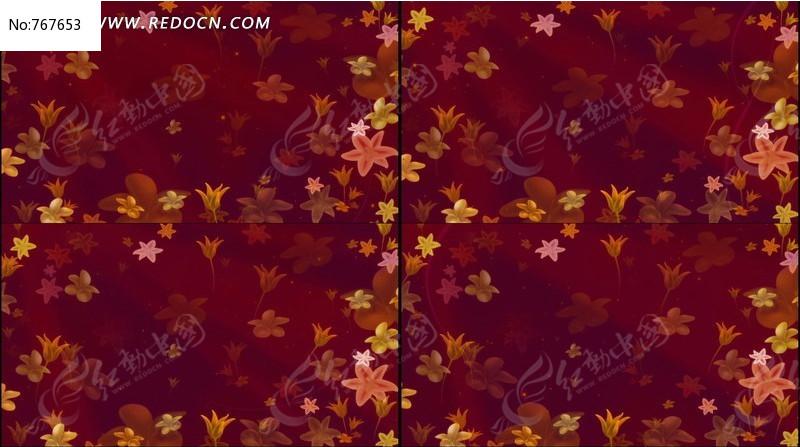 美丽的花朵飘舞动态视频背景图片素材 红动手机版图片